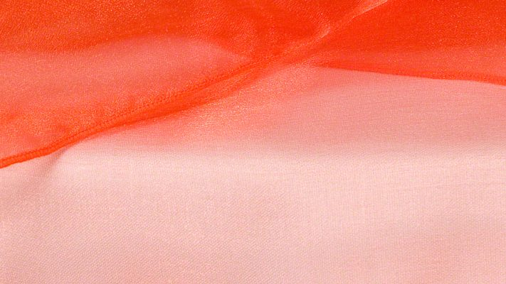 Tiger Lily Sheer Organza
