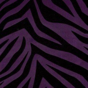 Amethyst Zebra Fever
