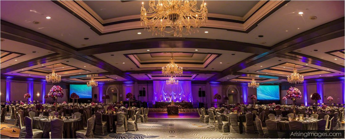 Doogal Wedding at The Henry Hotel in Dearborn Michigan