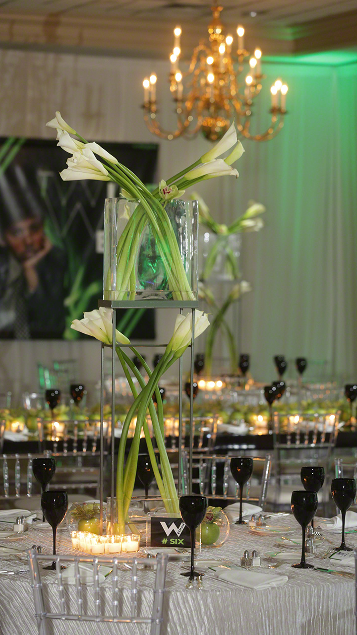 Check Out Photos From Ethan S Bar Mitzvah Fabulous