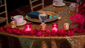 Asher/Bhat Wedding at The Ann Arbor Marriott Ypsilanti