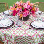 Bright hibiscus pink and aloe green with a touch of whimsy, the Catalina is a bold and vibrant print. Part of the Palm Beach Chic collection, Catalina is perfect for a glamorous soiree. Browse the entire collection today!